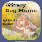 Celebrating dog moms! 5 gift ideas for your favorite dog mom.