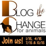 Same Blog The Change For Animals, New Blog The Change Place