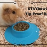 Wasted food leaving you frustrated? STAYbowl™ to the rescue.