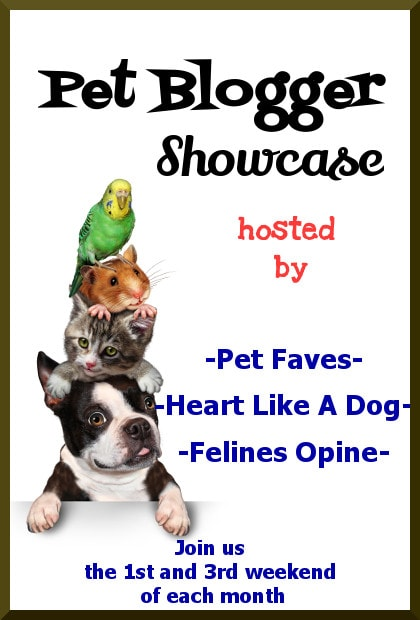 Welcome to the Pet Blogger Showcase! This is the place for you to show off your favorite family friendly pet related posts, find other great posts to read, show some love to other bloggers and maybe be featured on one of the host blogs!
