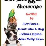 PET BLOGGER SHOWCASE September 3rd, 2016