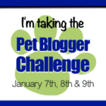 The Pet Blogger Challenge 2017