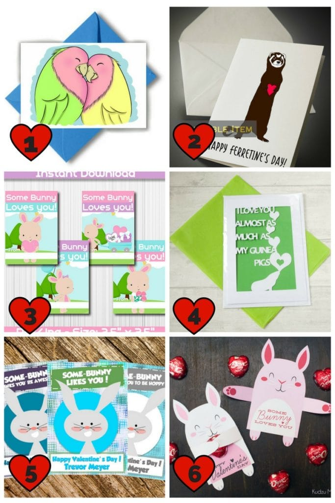 Small Animal and Bird Valentine Cards | Pet Valentine Cards | Printable Valentine Cards | Bunny Valentine Cards | Ferret Valentine Card | Guinea Pig Valentine Card