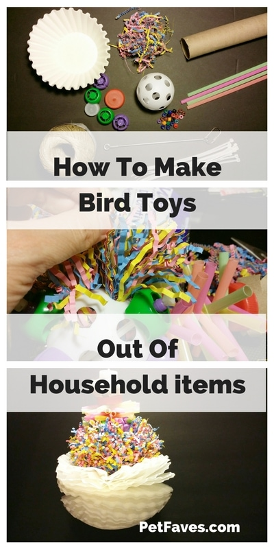 How to make bird toys out of household items | PetFaves.com