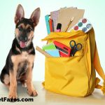 Backpacks and Book Bags for Pet Lovers