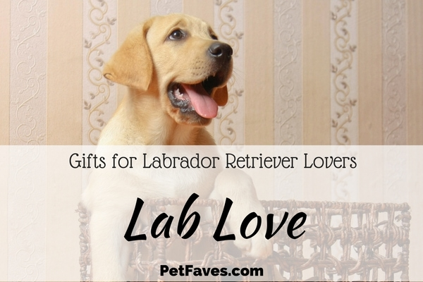 Gift ideas for Lab lovers. One can never have too much Labrador Retriever stuff, right?