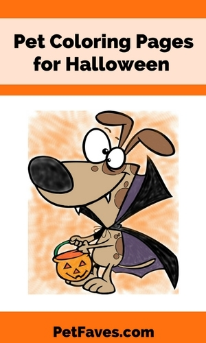 Looking for something to keep your kids busy until Trick or Treat time? How about some pet coloring pages for Halloween.