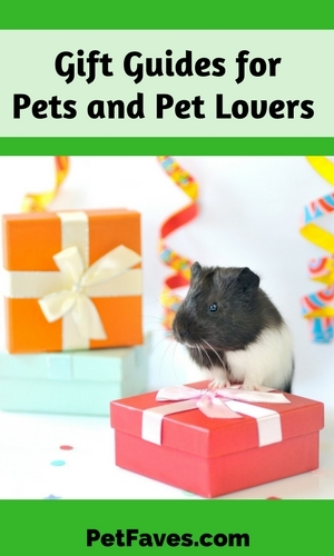 Are you racking your brain trying to come up with a favorite gift for your pet, your vet or another pet lover? Or maybe you are looking for something unique to give. No worries, I've come to your rescue with some gift ideas for pet lovers that will be sure to help you out.