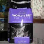World's Best Cat Litter Lavendar Scented