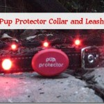 Staying Visible At Night With Pup Protector