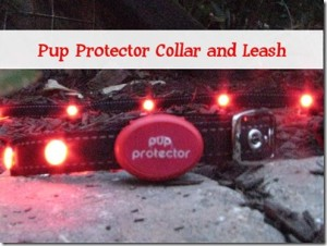 Keep your dog and yourself safe at night with Pup Protector collar and leash.