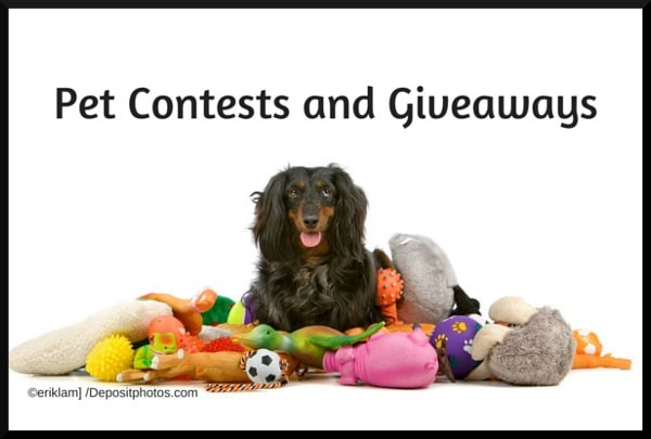 Pet Contests and Giveaways
