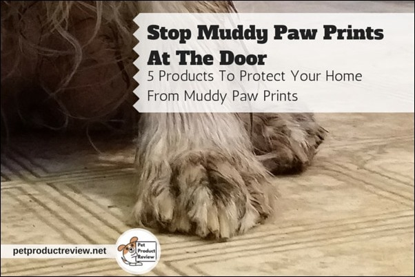 5 Products To Take Care of Muddy Paws- You could go with the old standby- a towel, to take care of your dog's muddy paws. Or you might want to try one of these products.