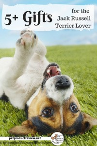 Jack Russell Terrier Love: gifts for Jack Rusell Terrier lovers