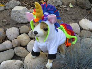 Rainbow Unicorn by Cozy Pawz