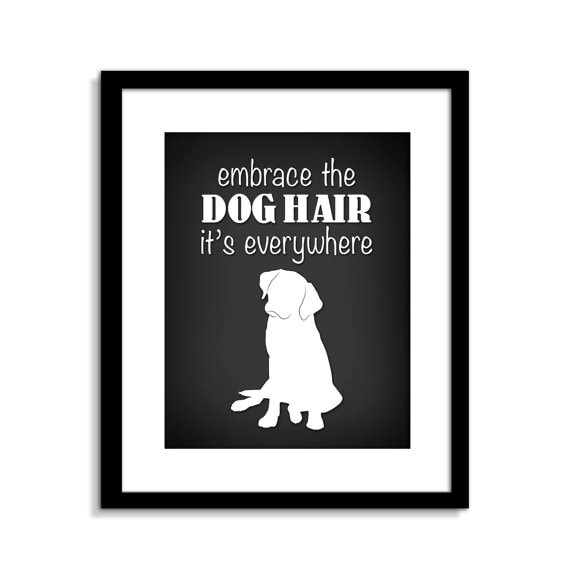 Embrace the Dog Hair sign by ClassicJane from Etsy
