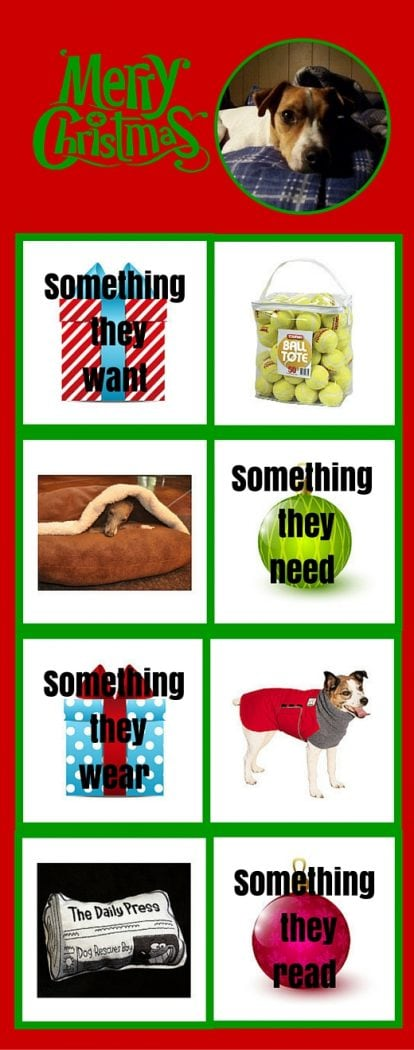 4 Christmas gift challenge for dogs