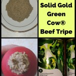 Taste Testing Solid Gold Green Cow® Beef Tripe for dogs.