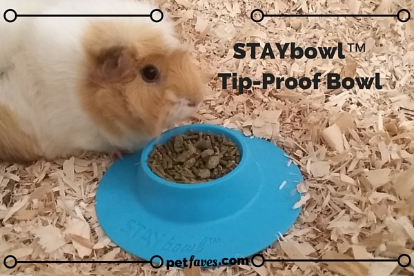 STAYbowl™ Tip-Proof Bowl keeps the food in the bowl and not on the cage floor.