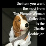 From petfaves.com: You know you're a pet parent when... the item you want the most from The Pioneer Woman Collection is the Charlie Cookie Jar. What is your favorite You Know You're A Pet Parent When... moment? Share in the comments and you might see it in a future post.