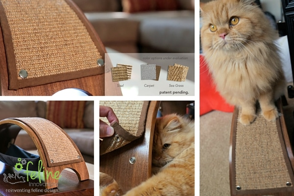 Kickstarting the Quicksnap Cat Scratcher