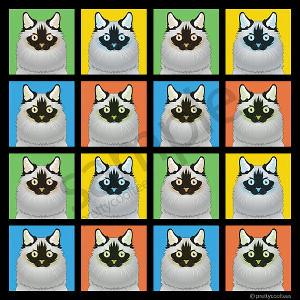 Ragdoll Cat Seal Point Tshirt