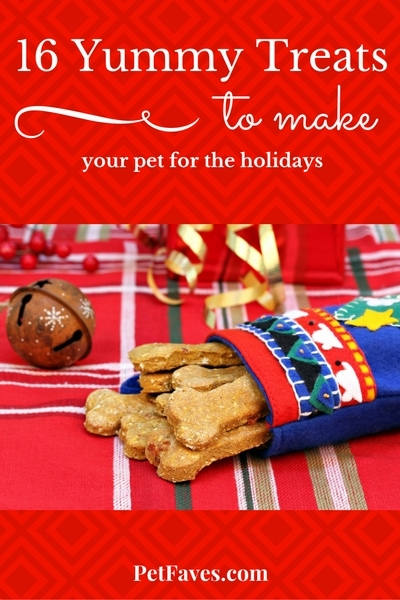 PetFaves.com | 16 Yummy treats for you to make for your pets for the holidays