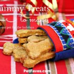 16 Yummy Treats to Make Your Pet for the Holidays