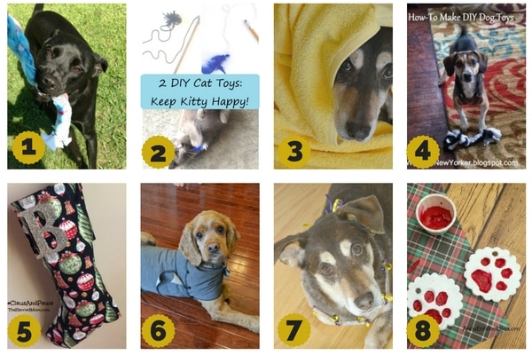 8 gifts to make for pets