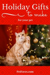PetFaves.com   Are you looking for a unique gift to give your pet? Or maybe you are looking for a last minute gift idea for your favorite pet person. See if you find the right thing with these holiday gifts to make pets.