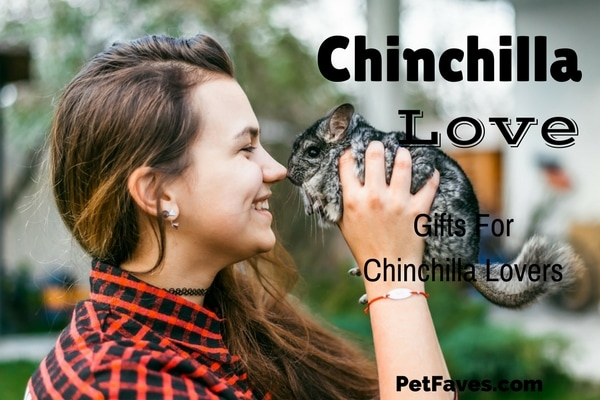 I really didn't know chinchillas until I became a chin parent. KeeKeeDee joined my family and I discovered all the little things that make chinchillas chinchillas. From those cute ears to the darling tail, you just can't help falling in love with them. If you are like me that love takes over a lot of different areas of your life and you can't help showing that love to everyone. And with so many products out there, you can show it in so many ways.