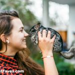 Chinchilla Love- Gift Ideas for Chinchilla Lovers