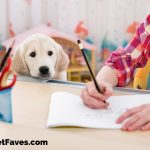 Binders, Tablets and Folders For Pet Lovers