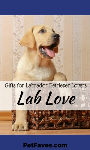 Labs are popular so you can find Lab stuff everywhere, but you have to look for the unique Lab items. Here are a few that would be great to add to your Labrador Retriever collection or get as a gift for your favorite Lab lover.