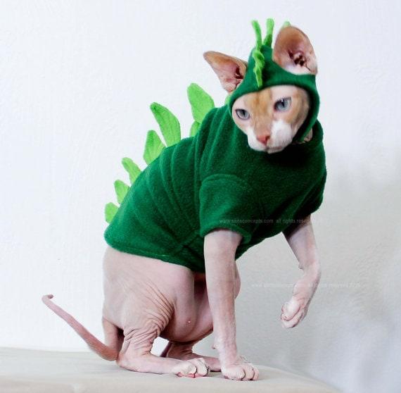 Dog Costumes Dinosaur Triceratops 5