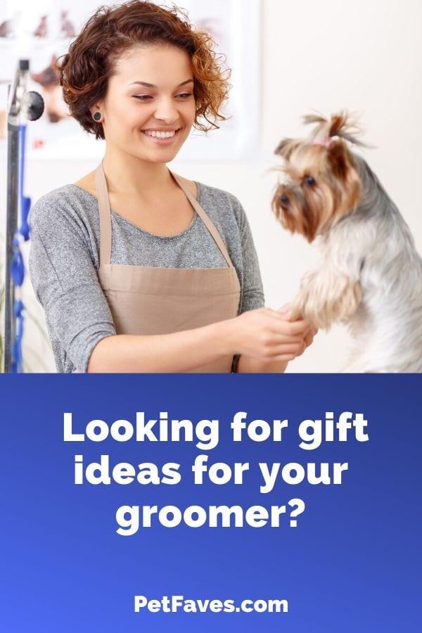 dog groomer with Yorkie