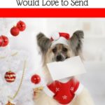 Christmas Cards Any Pet Lover Would Love to Send