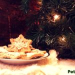 Don't forget the dog when you are doing your holiday baking. Make time for this 3 Ingredient Christmas Dog Treat Recipe and make your dog happy.