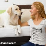 The Perfect T-Shirt for Pet Parents Who Love to Talk About Their Pets
