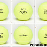 Dog tennis balls with funny saying on them