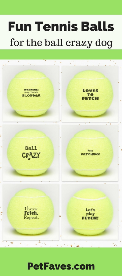 Dog tennis balls with funny sayings