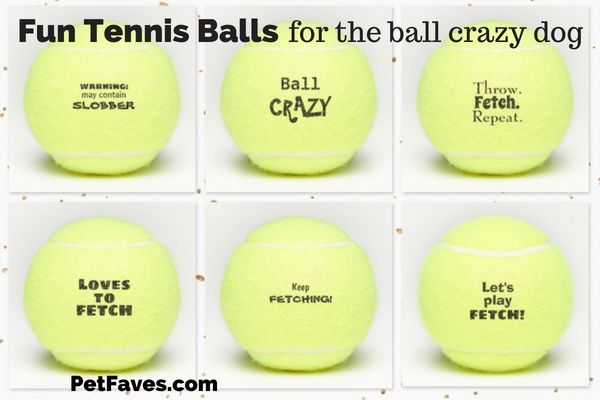tennis balls with funny saying on them for dogs