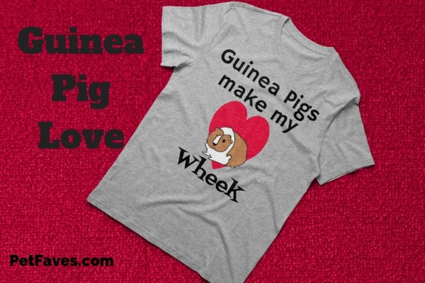 guinea pig and heart on a t-shirt