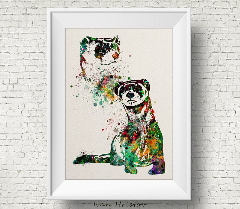 brown ferret with multicolor splashes watercolor poster